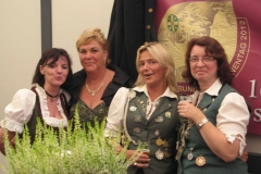 2011_Bundesfest-Harsewinkel 016